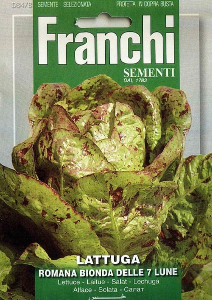 Franchi Samen Lattuga Romana Bionda Delle 7 Lune Salat