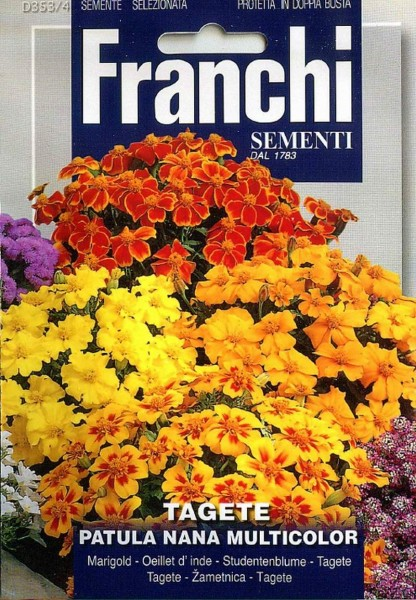 Franchi Samen Blumen Tagete Patula Nana Multicolor Studentenblume