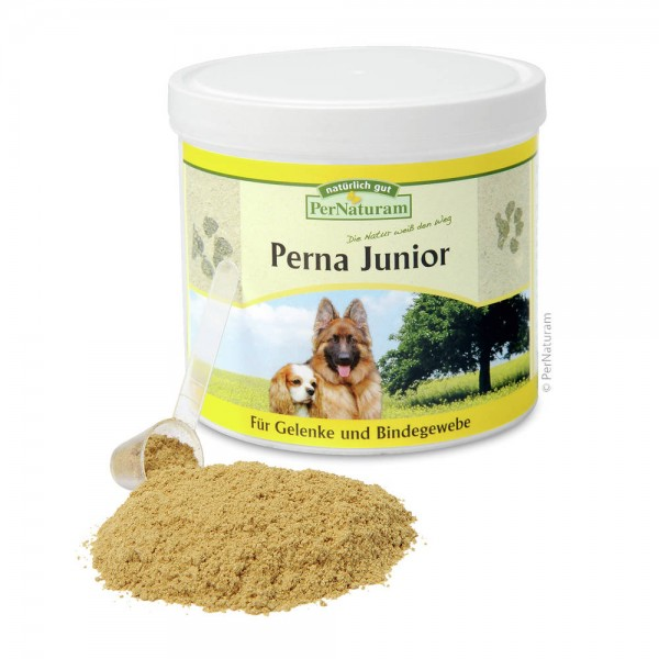 Perna Junior 250g